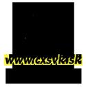 cxsvk.sk
